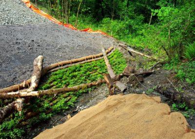 Emergency Slide Repair
